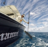 gaffing kingfish on emanuel