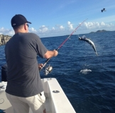 jumping tarpon st thomas fishing
