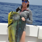 mahi fishing st thomas