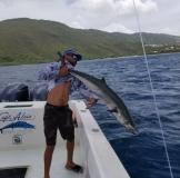 st thomas kingfish charter