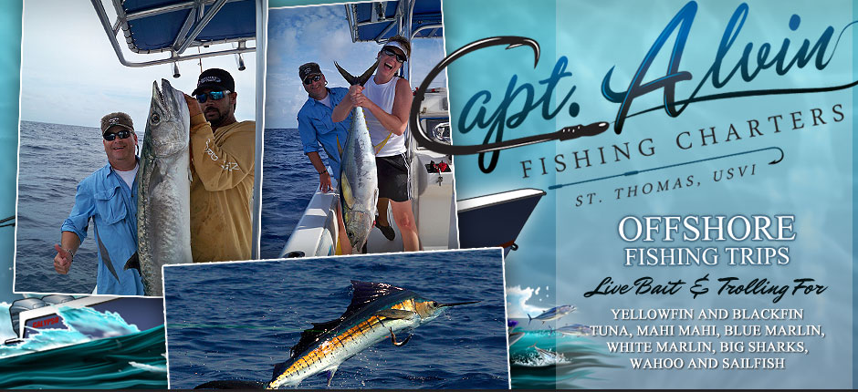 Fishing charters and trips in st thomas usvi capt alvin for Port charlotte fishing charters
