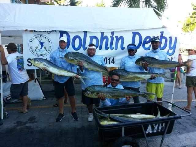 DolphinDerbyWeighIn