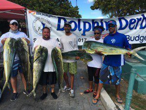 2017DolphinDerby(6)